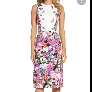 Maggy London Floral Garden Cotton Sheath Dress Sz4